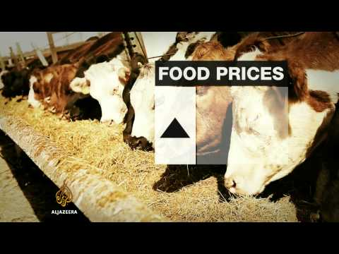 Americans struggle as food prices rise