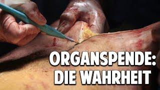 Organspende: Die verheimlichte Wahrheit