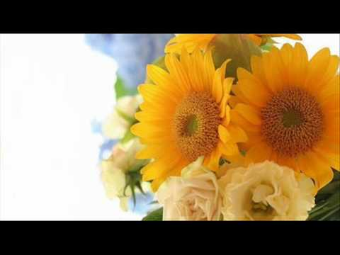 A. Vivaldi: Op. 1 n. 1 - Trio sonata for 2 violins & b.c. in G minor (RV 73)