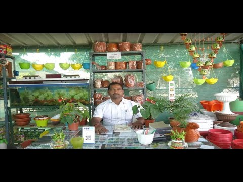 Plant Nursery Varanasi Sansar Nursery One of The Best Indian Nurseries