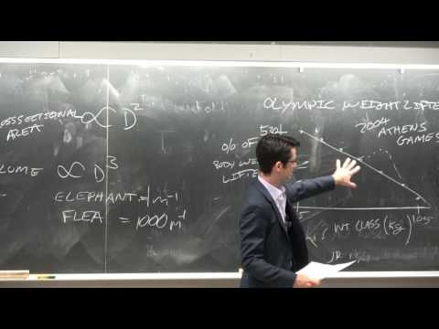 Ep22 Scaling laws, elephants and mice, catalysts, Haber process. UCSD, NANO 101, Darren Lipomi