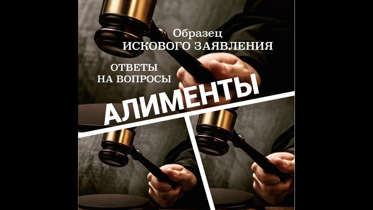 вопросы по алиментам юристу