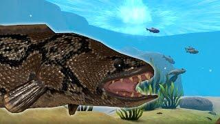 РЫБА ЗМЕЯ ЗАВАЛИЛА СОМА?! НОВАЯ ОПАСНАЯ ЗМЕЕГЛАВАЯ РЫБА! РЫБИЙ ЧЕЛЛЕНДЖ! FEED AND GROW FISH