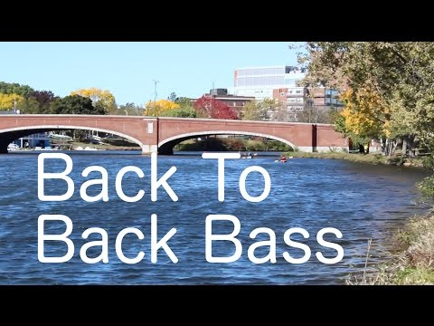 Charles River Back to Back Bass