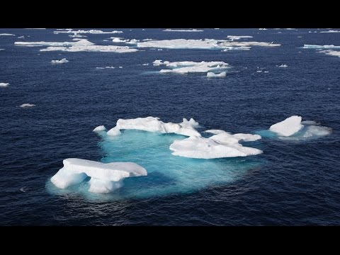 Offshore drilling in Arctic Sea banned till 2020