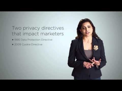 Data Privacy Protection Laws in the EU