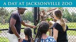Jacksonville Zoo Private Tour - Our Visit to the Jacksonville Zoo and Gardens - Top Flight Family