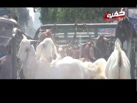 Khufia Bakray, Khufia Operation - Promo, 18 Sep 2015