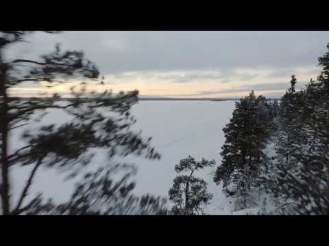 Winter forrest | quadcopter clip