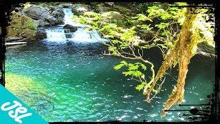 Siouxon Creek | MΟST BEAUTIFUL Swimming Hole of Washington State