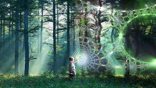Progressive Psytrance Mix - Trancemission
