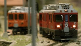 HO Narrow Gauge Model Railway Layout with Swiss Model Trains