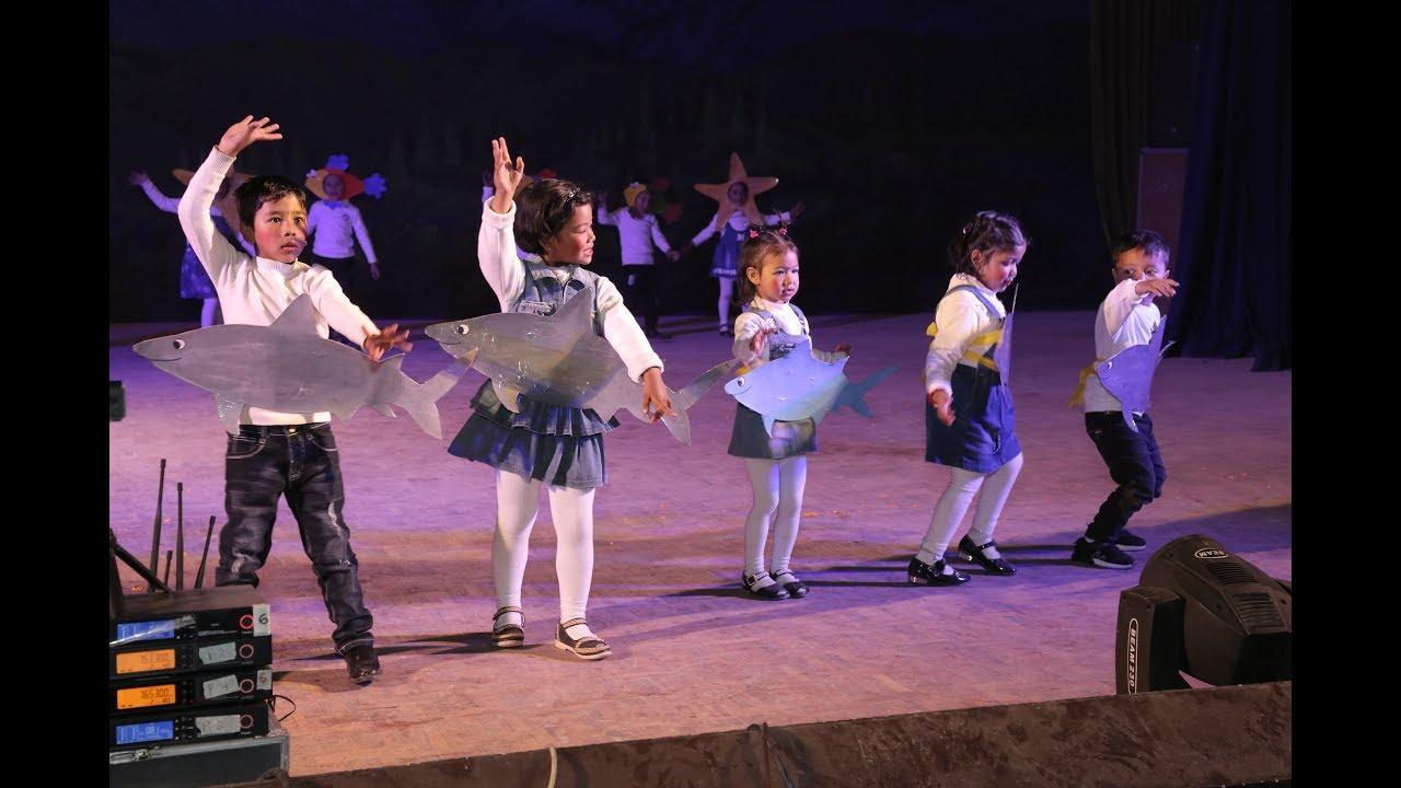 Baby shark-Dance by Prep I   Rosebud School Annual ...