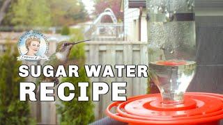 How to Make Hummingbird Food