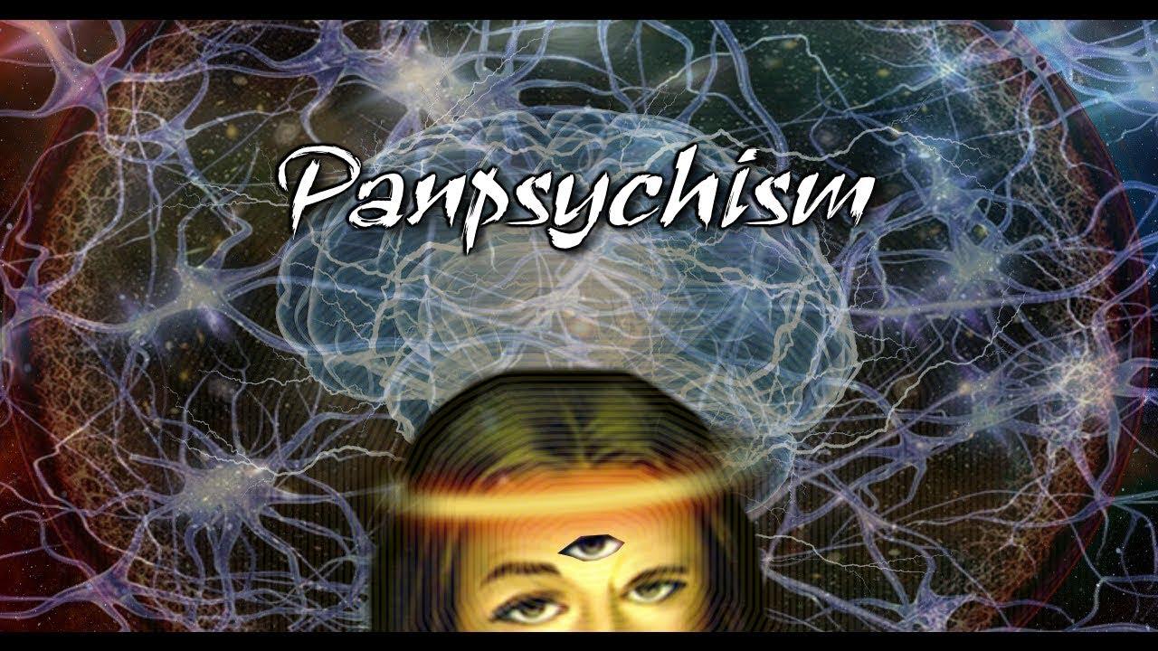 Panpsykismi