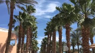 Hotel Beach Albatros Resort & Spa * Hurghada * Ägypten 2015(Dieses Video ist ein Zusammenschnitt von kleinen Aufnahmen vom Hotel Beach Albatros Resort & Spa in Hurghada. Wir waren von Ende Februar bis Mitte ..., 2015-03-23T16:19:03.000Z)