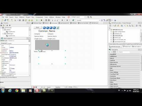Delphi Programming Tutorial #62 - Intro to IntraWeb