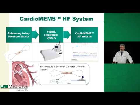 Heart Failure Guidelines and Program