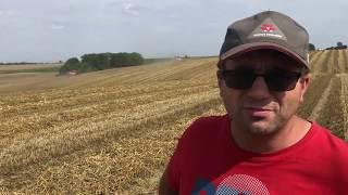 Rolnik - Pan Suszek z Lublina zachwycony kombajnem ROSTSELMASH RSM 161 - obejrzyj testy na polu