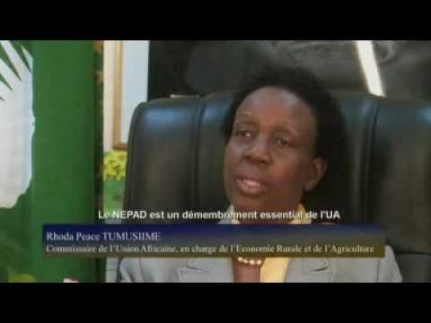 NEPAD@10 video