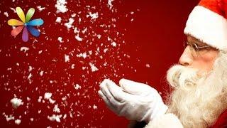 Фокусы, которыми вы удивите близких в новогоднюю ночь – Все буде добре. Выпуск 732 от 31.12.15