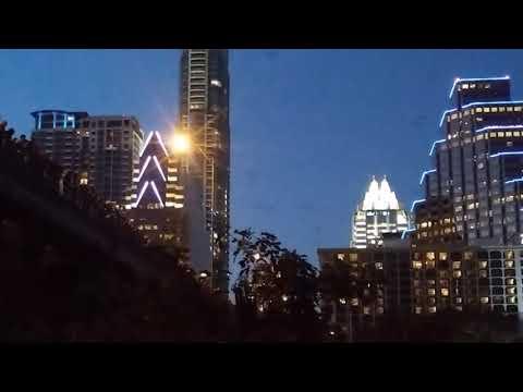 Congress Ave Bridge Bat Show