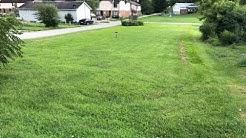 Land For Sale: 8253 Court Avenue,  Hamlin, WV 25523   CENTURY 21