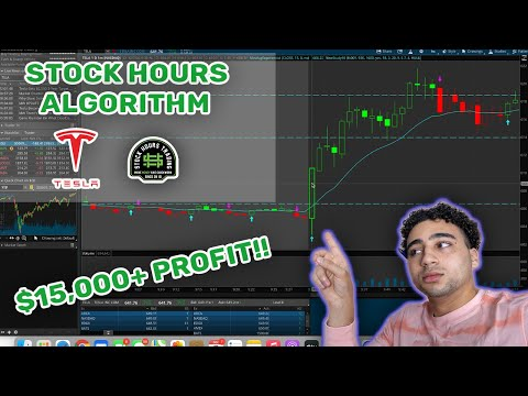 Wallstreet Algorithm Makes Me $15,000 Trading Stocks🤯