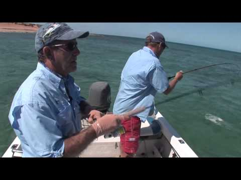 Exmouth Gulf Shallow Water Action (Part 1)