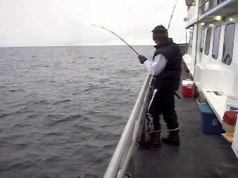 Mackerel fishing jersey shore 20110 01 07 ppb nj youtube for Nj shore fishing report