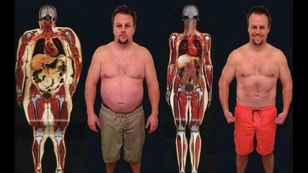 Paleo diet to reduce body fat