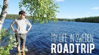 My Life in Sweden #2 - Jonas & Charlie Roadtrip! (In Dalarna, Sweden)