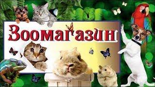 Классный зоомагазин! Где купить домашнего питомца Все для животных!| Cool pet store!All for animals!