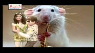 Children's Songs Rat song very sweet kids song !! +More Nursery Rhymes & Kids Songs - KIDS DADA