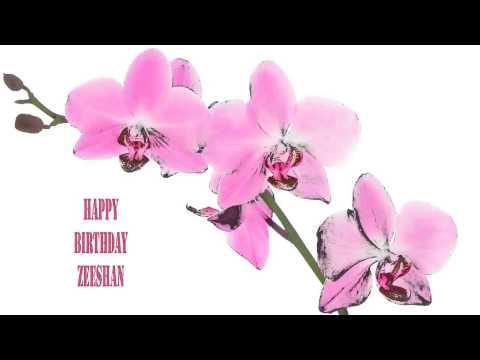 Zeeshan   Flowers & Flores - Happy Birthday