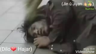 Kurdische Musik! Sâbrê 😟 (Dilo❤ Hajar)
