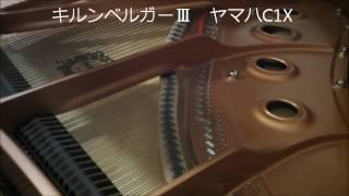 音律サンプル04/ヴェルクマイスターⅢとキルンベルガーⅢ/シューマン「幻想小曲集」から1.夕べに