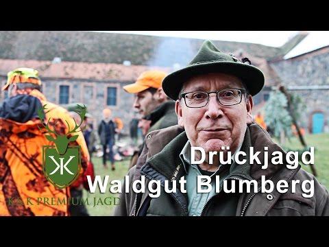 Drückjagd Waldgut Blumberg
