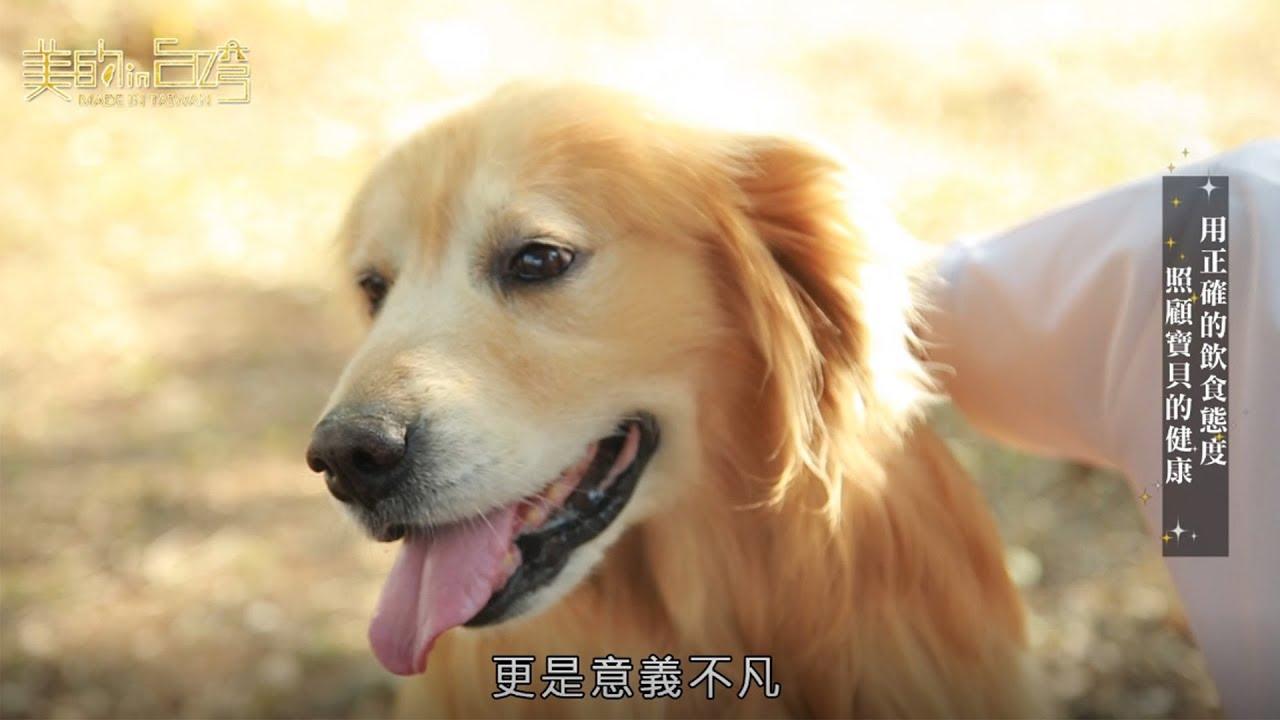 中天美的in台灣 吉利丸鮮食【用正確的飲食態度 照顧寶貝的健康】