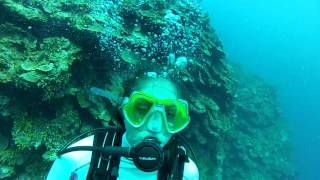 Montego Bay Scuba Dive 3 of 6 - Active panic in open water diver
