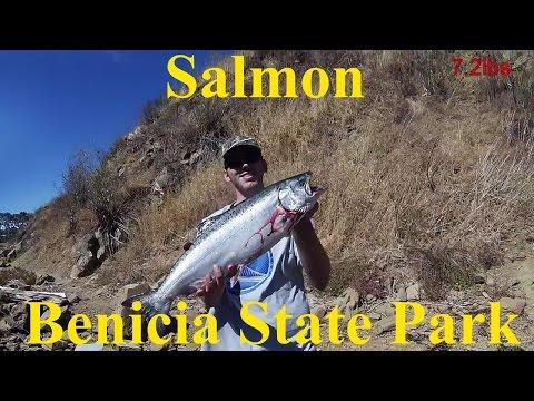 Salmon Benicia State Park 10.8.16