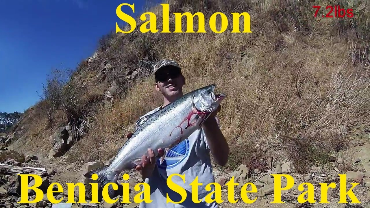 Salmon benicia state park 10 youtube for Benicia fishing report