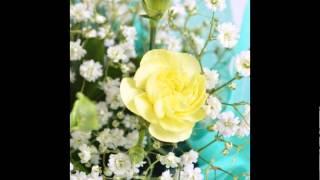 видео Купить Цветы на День поцелуя с доставкой и на заказ