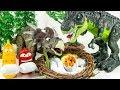 엄마 공룡들이 화났다! 사라진 공룡알을 찾아라! 귀여운 아기공룡 부화 놀이 장난감 티비 동영상