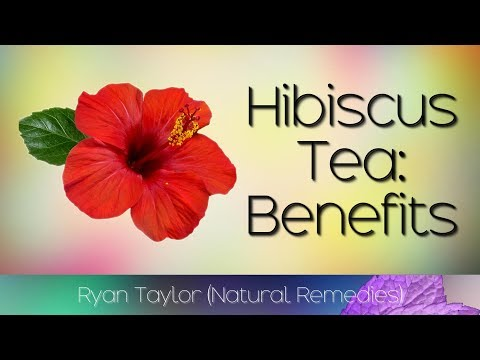 Hibiscus Tea Benefits And Uses Canada Xxxl Hublv