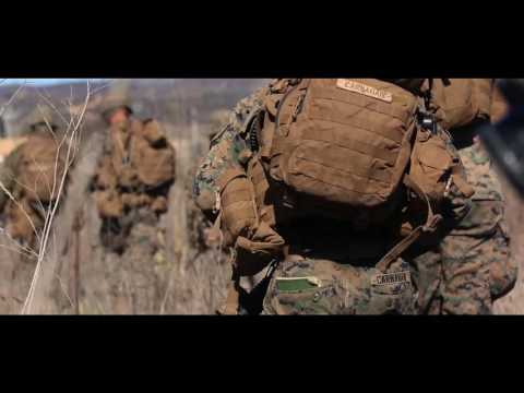 Steel Knight 2017: 1st Battalion 1st Marine Regiment Amphibious Assault