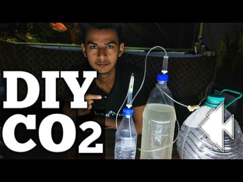 DIY CO2