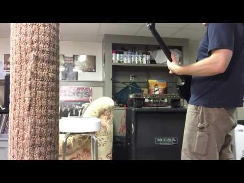Peavey VTM 120 clip