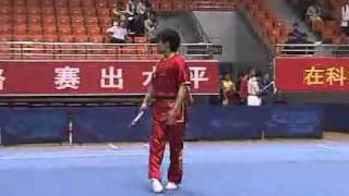 2010年全国武术套路锦标赛(传统)M10 002 男子长穗剑 刘少楠