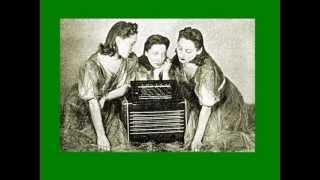 IL GATTO IN CANTINA: Trio Lescano con l